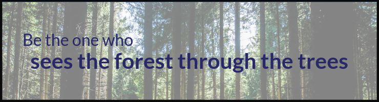 Be the one who sees the forest through the trees